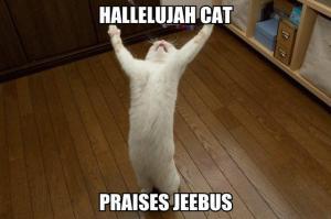 hallelujah-cat-praises-jeebus
